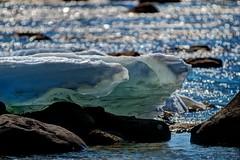 _MAD0960 (le Brooklands) Tags: colour ice sparkles river nikon labrador font nl meltdown couleur glace sigma120300mm route500 riviere ashuanipi d7000 etincelles