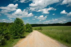 Hello, May! (MilkaWay) Tags: field grass clouds georgia bluesky athens pasture vegetation dirtroad lush cowpasture clarkecounty