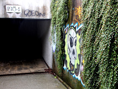 163/365 An Inviting Pedestrian Underpass (ruthlesscrab) Tags: publicspace wah day163 project365 werehere 365project day163365 3652013 hereios 12jun13 365the2013edition