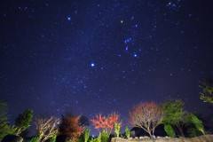 Winter Triangle above Cherry Blossoms Valley (Phebe Pan) Tags: earthandspace competition:astrophoto=2013