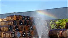Rainbow over whisky casks (tor-falke) Tags: scotland rainbow europa sony ngc scottish whiskey scotch springbank kintyre écosse campbeltown scotchwhisky scotchwhiskey sonyalpha alpha200 singlemalts springbankwhisky torfalke flickrtorfalke