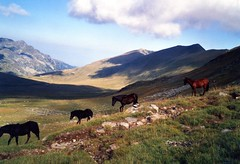 Bulgarie Rhodopes