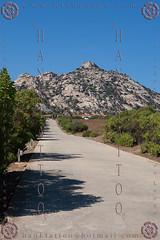 SARDEGNA 2013 - Hank & Giada in Tour @ 01 - 11712 (hanktattoo) Tags: sardegna parco tour bis hank duro 41 isola asinara carcere naturale 2013 41bis ghinada