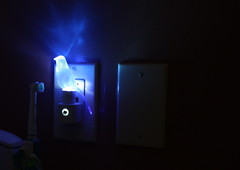 blue canary in the outlet by the light switch (mevrain) Tags: cool theymightbegiants nightlight cooltones bluecanary