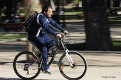 la felicidad de la bicicleta (Angela Paz) Tags: city santiago bike canon happy bicicleta felicidad forestal