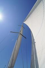 Sunny sailing (Wiljo van Essen) Tags: blue summer sky sun water zeilen nikon blauw sailing sunny zomer sail mast lucht zon ijsselmeer zeil zeilboot sailingboat mooiweer fok noclouds zonnig grootzeil onbewolkt clearbluesky sunnyweather blauwelucht hagoort jxxp hagoortsails