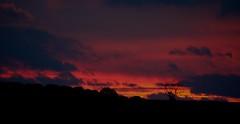 red sky at night.... (laufar1) Tags: