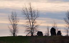 Toronto - Lake Ontario shoreline - Sheldon Lookout Park landscape. (edk7) Tags: toronto ontario canada tree rock landscape waterfront shoreline lakeontario pl5 2013 edk7 sheldonlookoutpark
