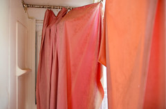 pink in the shower (mcfcrandall) Tags: house abandoned neglect bathroom shower collingwood curtain ripped torn