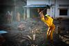 Chopping wood (Lil [Kristen Elsby]) Tags: travel topf25 cambodia southeastasia buddhist topv1111 monk buddhism monastery monks lensflare editorial backlit backlighting battambang buddhistmonks woodchopping buddhistmonk travelphotography choppingwood documentaryphotography buddhistmonastery canon5dmarkii