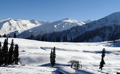 Winters in Kashmir (abass_ali_shah) Tags: snow day daytime kashmir snowfall gulmarg flickrandroidapp:filter=none pwwinter