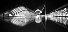 Valencia - ciudad artes y las ciencias (Mathew Roberts) Tags: las santiago bw white black reflection valencia architecture reflections spain y ciudad mat calatrava roberts artes mathew ciencias mathewroberts