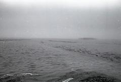 Road to Lt Island - Wellfleet, Ma (Cape made 13) Tags: blackandwhite bw film 35mm canon rebel kodak capecod trix tamron eos2000