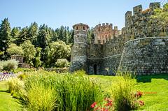 Castilla (ariemmanuel) Tags: flowers tower castle nature field garden vineyard spring napa