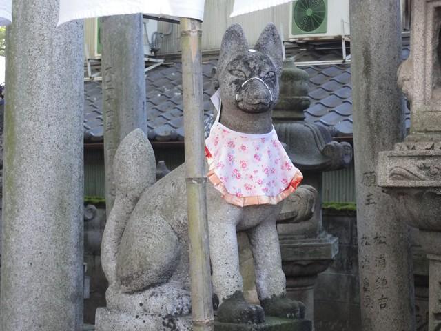 お稲荷さんらしくいたるところにキツネの石像があります。|千代保稲荷神社