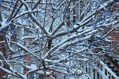 Verdun (abdallahh) Tags: winter snow canada montral hiver qubec neige february fvrier verdun