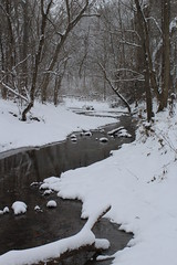 Snowy Creek (Shutterfool) Tags: winter ohio snow cold ice midwest snowstorm freezing winterstorm noreastern
