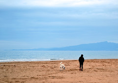 Walk (Ge.s311) Tags: sea dog beach water walking mar agua friend alone wave playa catalonia best arena perro paseo lone caminar around catalunya feeling terra cami olas passeig aigua gos ola tarragona andando platja onada andar sorra solitud onades