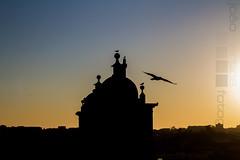 Igreja dos Grilos - Porto (Oporto) (Joo.Martins) Tags: city sunset portugal church north iglesia porto igreja oporto norte pds grilos nortedeportugal cityescape northportugal