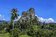 Gunung Reng (Ameen Ashraf) Tags: blue sky mountains clouds village bluesky jungle kampung awan afternoonsun mystic coconuttrees kelantan mountainrange my pokokkelapa canoneos6d banjarangunung batumelintang gunungreng