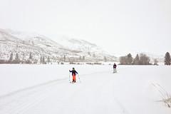 Big Valley Trail (ggrayum) Tags: winter snow washington ethan valley methow skivacation