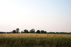 Countryside in Maryland (le calmar) Tags: old sunset summer usa sun field rural canon evening soleil town us md village unitedstates may maryland sunny historic atlantic east mai dos t soir northeast chestertown champ vieux eastcoast historique atlantique tatsunis 50d 2013 canon50d cteset