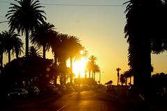 IMG_9141 (OrangeCounty_Girl) Tags: california usa america photography socal southerncalifornia dslr huntingtonbeach hollyclark hollyclark714 canonrebelxti3