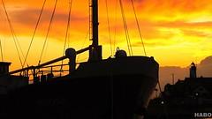 schepen (Harmen de Boer) Tags: sunset ships urk seasky pavona