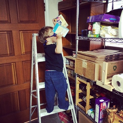 "Ollie had fun ""organizing"" the pantry, a thing he's seen mom and dad do. Except his technique undoes all the organizing I did a week ago, leaving stuff all over the garage and three empty shelves...wait for it, ""for toys."""