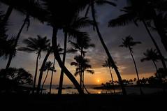 DSC_0435 (tehLEGOman) Tags: sunset hawaii waikiki oahu koolina