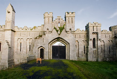 dog at Duckett's gate (backpackphotography) Tags: ireland detail castle architecture ruins gate ruin mansion gothicrevival carlow enzi duckettsgrove