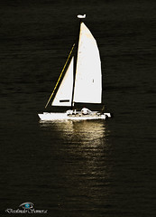 Velejando na Guarapiranga (Deolindo Somera) Tags: barco represa vela turismo aguas lancha bote somera iate velejar guarapiranga