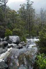 Pelverata Falls