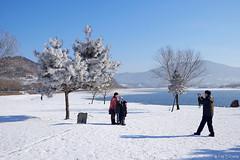 吉林霧凇 (oeyvind) Tags: china winter hoarfrost 中国 kirin 中國 jilin 吉林 松花江 树挂 chn 樹掛 xf1855mm