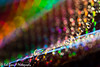 20150207_37_Macro_Folie (Rob_Boon) Tags: macro foil creative waterdrops folie creatief waterdruppel colormania robboon