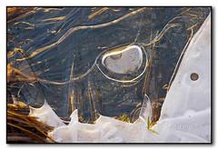 Ice Abstraction (seagr112) Tags: california ice unitedstates yosemite yosemitenationalpark gravel yosemitevalley mercedriver icebubbles sonya900
