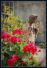 SENTINEL (marsha*morningstar) Tags: flowers red statue bronze golf florida clubs sebring lawnstatue