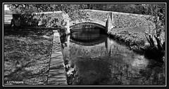 04.05.16 Beddiington Park.. Bridge (Tadie88) Tags: nature water wildlife bridges surrey wallington beddingtonlake