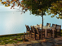 Λιμνη Πλαστηρα P1150497 (omirou56) Tags: lake tree water greece 43 ελλαδα θεσσαλία νερο δεντρο καρεκλεσ λιμνηπλαστηρα panasoniclumixdmctz40