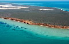 Shark Bay WA - DSC3213