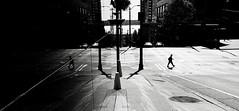 walk away (Dean Forbes) Tags: seattle street bw reflection walking person downtown sidewalk