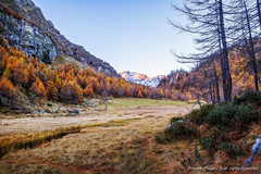 Fall colors at Alpe Devero (A look through lens) Tags: autumn italy mountain colors season landscape europe italia it location piemonte environment plugin lightroom mountainscape photomatix alpedevero tonemapping baceno colorefexpro fallscolors on1enhance