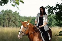 horse (horschte68) Tags: pentax k10d reiten pferd horse outdoor natur nature ride germany fränkischeschweiz franconianswitzerland deutschland braun