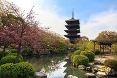 , T-ji (Fotodave42) Tags: japan kyoto    tji