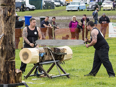 dorset axemen (mikejsutton) Tags: road wood tractor mike water train truck pull mirror three saw mud boots diesel taxi rally traction engine chainsaw steam pizza motorbike dorset axe motorcycle rocket suzuki tractors society gmc sutton preservation peterbilt 2016 aec axemen gt250 shillingstone okefords
