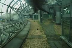 Schwebebahn Dsseldorf (josbert.lonnee) Tags: monorail skytrain schwebebahn dsseldorfairport hbahn einschienenbahn suspendedmonorail hangendemonorail vliegvelddsseldorf