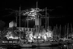 Moonlighting (cjb_photography) Tags: nightphotography sky moon toronto night clouds marina docks dock nightlights harbour nighttime moonrise nightime harbourfront moonlight queensquay blogto toron torontolife torontophoto weownthenight torontoclicks