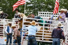 Blythewood Rodeo 2016-59 (Perry B McLeod) Tags: sc cowboys barrel bull racing bulls riding rodeo cowgirl calf saddle bronc blythewood roping ipra