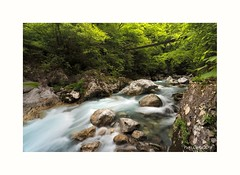 The bridge (Paco Costa) Tags: bridge green nature river slovenija tolmin eslovenia