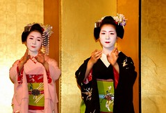 (nobuflickr) Tags: japan kyoto maiko geiko       miyagawachou   20160526dsc01883